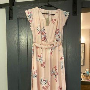 Baby pink Ann Taylor Loft dress - NWT